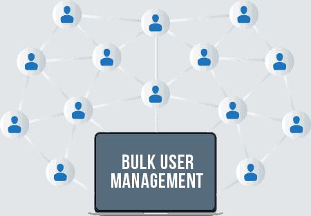 bulk user management